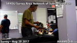 SANSU Surrey Area Network of Substance Users meeting on Aug 28 2017(26)
